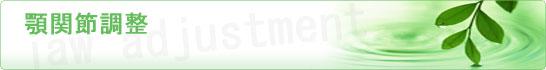 ヒーリングセラフ-顎関節調整